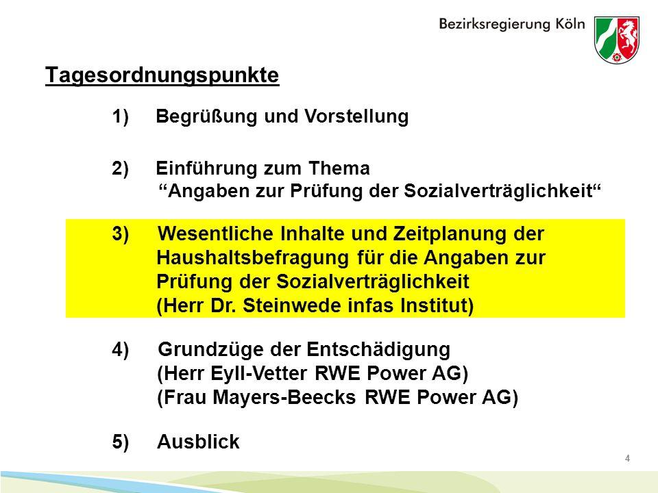 4 Tagesordnungspunkte 1) Begrüßung und Vorstellung 4) Grundzüge der Entschädigung (Herr Eyll-Vetter RWE Power AG) (Frau Mayers-Beecks RWE Power AG) 5) Ausblick 2) Einführung zum Thema Angaben zur Prüfung der Sozialverträglichkeit 3) Wesentliche Inhalte und Zeitplanung der Haushaltsbefragung für die Angaben zur Prüfung der Sozialverträglichkeit (Herr Dr.