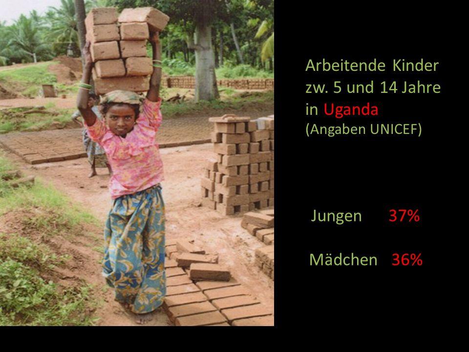 Jungen 37% Mädchen 36% Arbeitende Kinder zw. 5 und 14 Jahre in Uganda (Angaben UNICEF)