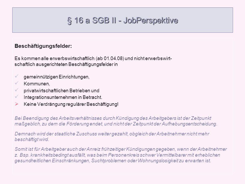 § 16 a SGB II - JobPerspektive Beschäftigungsfelder: Es kommen alle erwerbswirtschaftlich (ab 01.04.08) und nicht erwerbswirt- schaftlich ausgerichtet