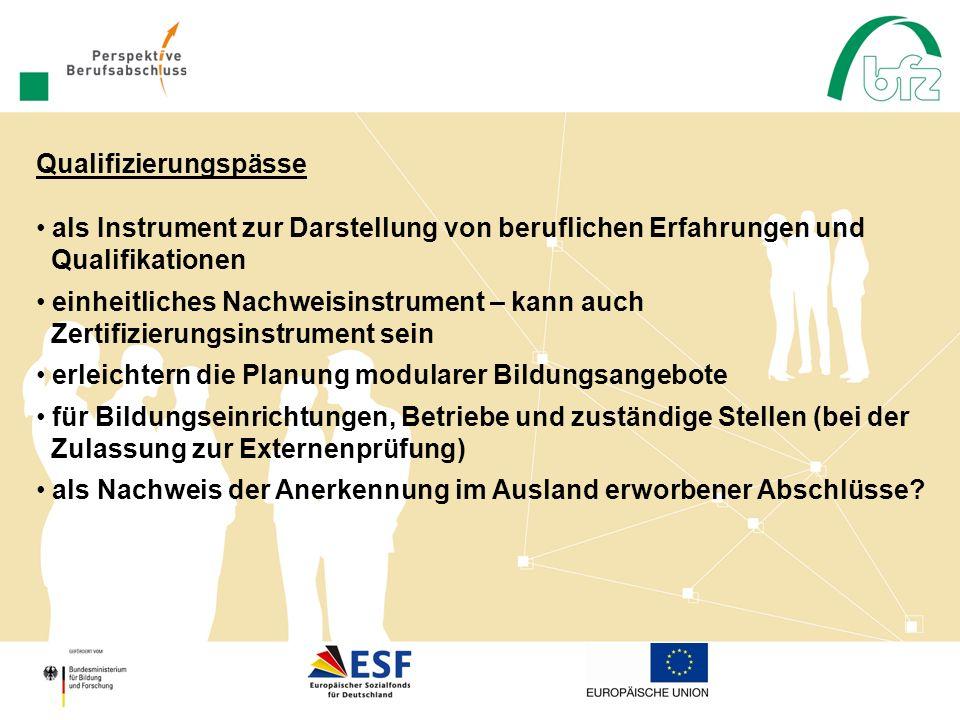 als Instrument zur Darstellung von beruflichen Erfahrungen und Qualifikationen einheitliches Nachweisinstrument – kann auch Zertifizierungsinstrument