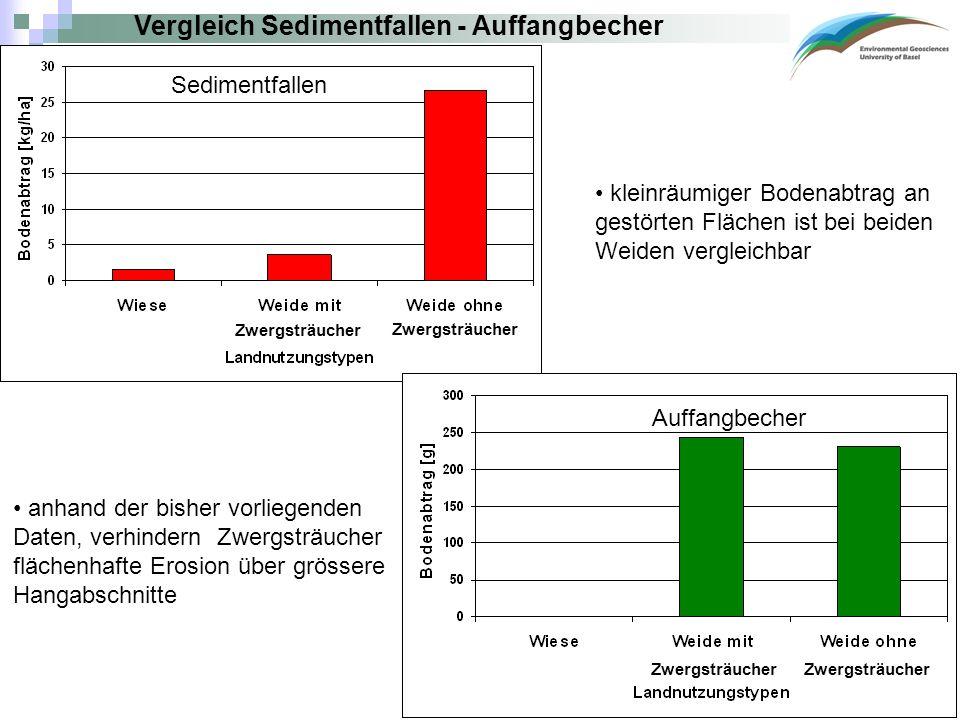Vergleich Sedimentfallen - Auffangbecher kleinräumiger Bodenabtrag an gestörten Flächen ist bei beiden Weiden vergleichbar anhand der bisher vorliegenden Daten, verhindern Zwergsträucher flächenhafte Erosion über grössere Hangabschnitte Sedimentfallen Auffangbecher Zwergsträucher