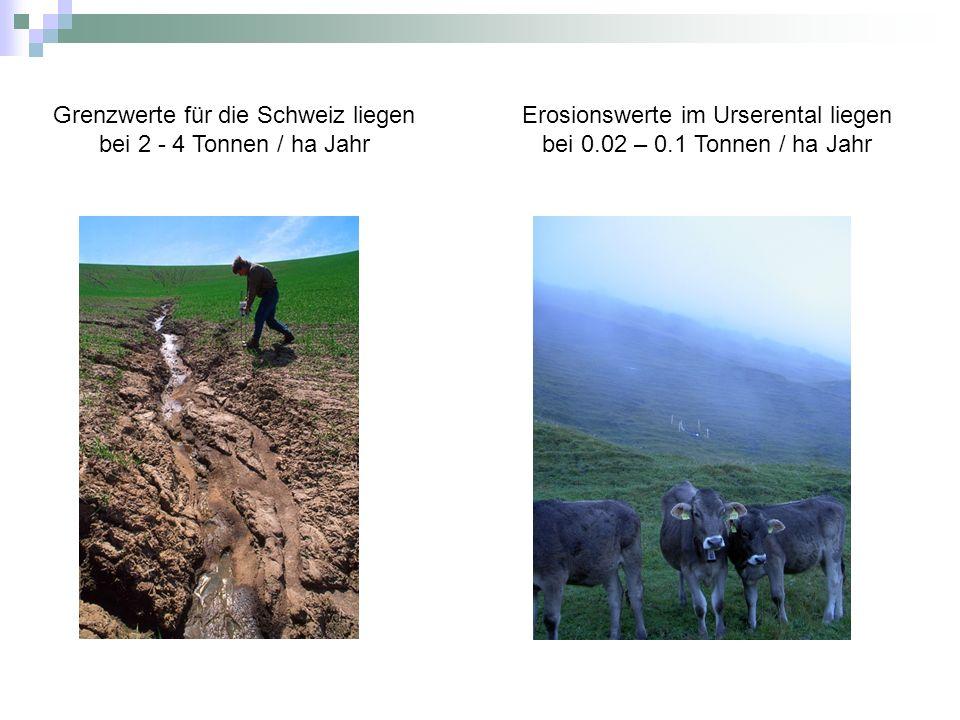 Grenzwerte für die Schweiz liegen bei 2 - 4 Tonnen / ha Jahr Erosionswerte im Urserental liegen bei 0.02 – 0.1 Tonnen / ha Jahr