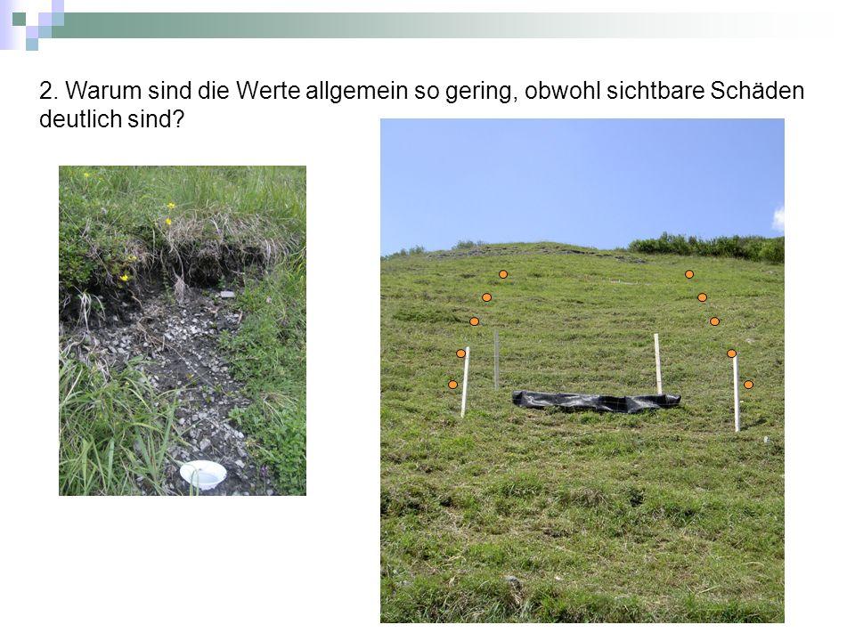 Hypothese: Boden wird flächenhaft verlagert, jedoch am Hang zwischengelagert 2.