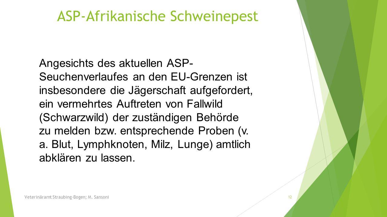 Angesichts des aktuellen ASP- Seuchenverlaufes an den EU-Grenzen ist insbesondere die Jägerschaft aufgefordert, ein vermehrtes Auftreten von Fallwild