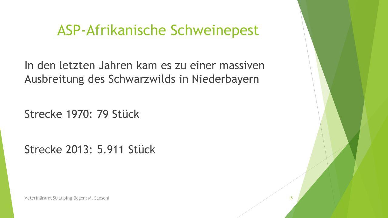 In den letzten Jahren kam es zu einer massiven Ausbreitung des Schwarzwilds in Niederbayern Strecke 1970: 79 Stück Strecke 2013: 5.911 Stück 15 Veteri