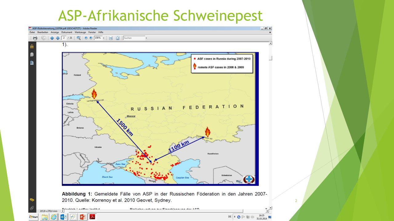 AK-Untersuchungen Wildschwein In den Quartalen 1-4 wurden am Bayerischen Landesamt für Gesundheit und Lebensmittelsicherheit (LGL) im Jahr 2013 gesamt 2798 Blutproben von Wildschweinen serologisch auf AK untersucht.