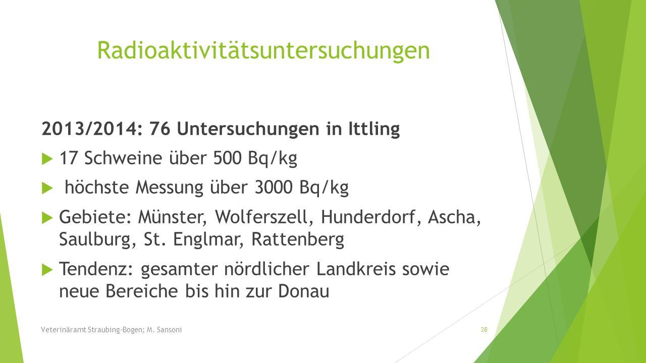 Radioaktivitätsuntersuchungen 2013/2014: 76 Untersuchungen in Ittling 17 Schweine über 500 Bq/kg höchste Messung über 3000 Bq/kg Gebiete: Münster, Wol