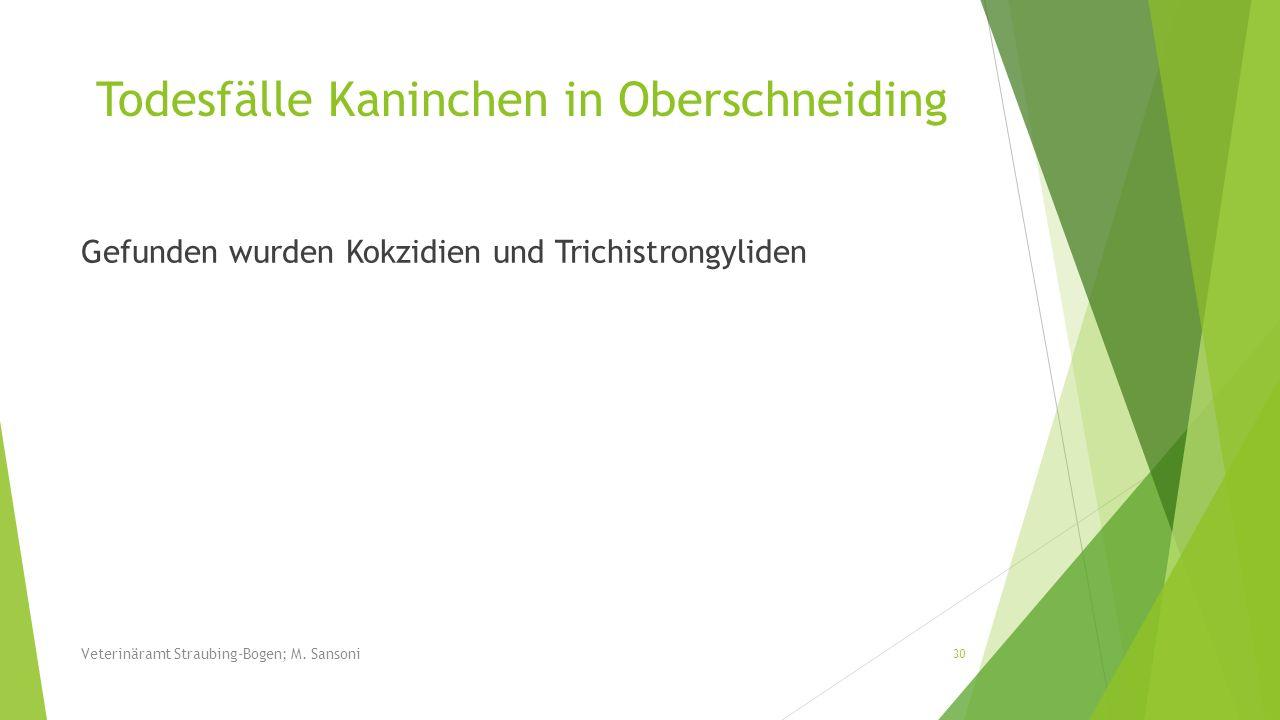 Todesfälle Kaninchen in Oberschneiding Gefunden wurden Kokzidien und Trichistrongyliden 30 Veterinäramt Straubing-Bogen; M. Sansoni