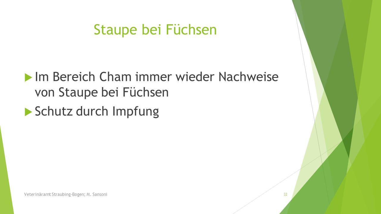 Staupe bei Füchsen Im Bereich Cham immer wieder Nachweise von Staupe bei Füchsen Schutz durch Impfung 32 Veterinäramt Straubing-Bogen; M. Sansoni