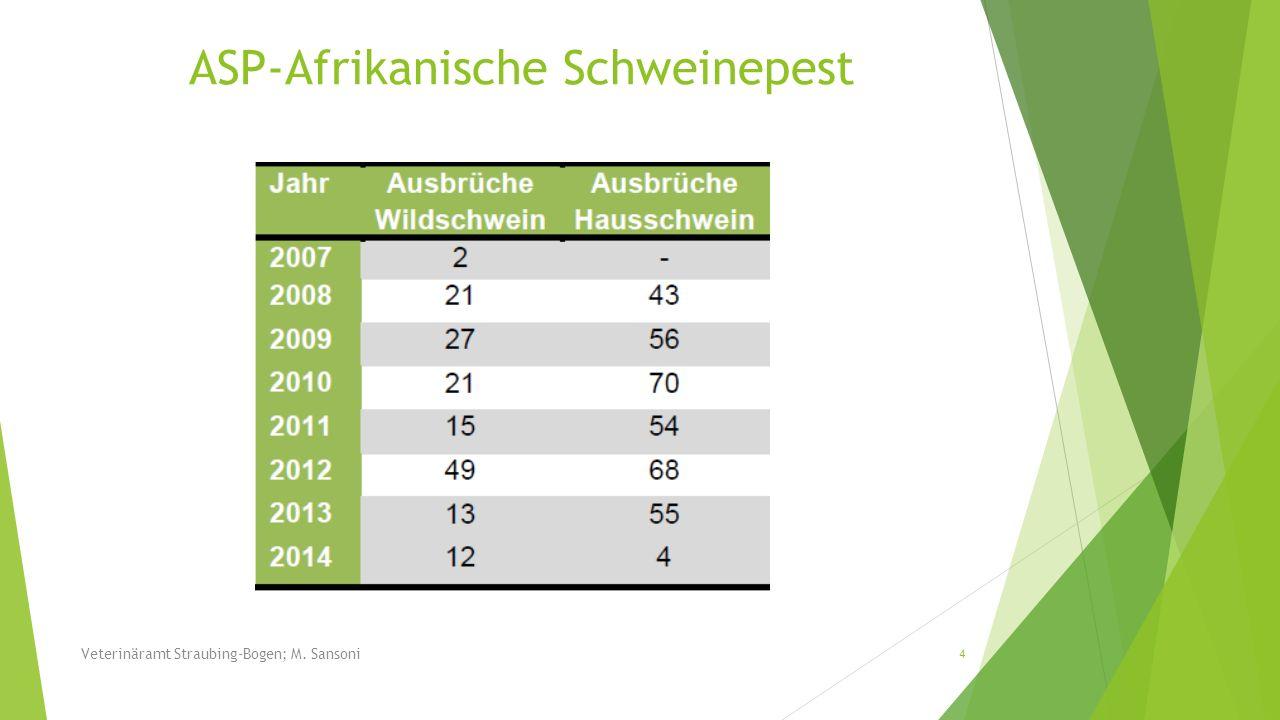 In den letzten Jahren kam es zu einer massiven Ausbreitung des Schwarzwilds in Niederbayern Strecke 1970: 79 Stück Strecke 2013: 5.911 Stück 15 Veterinäramt Straubing-Bogen; M.