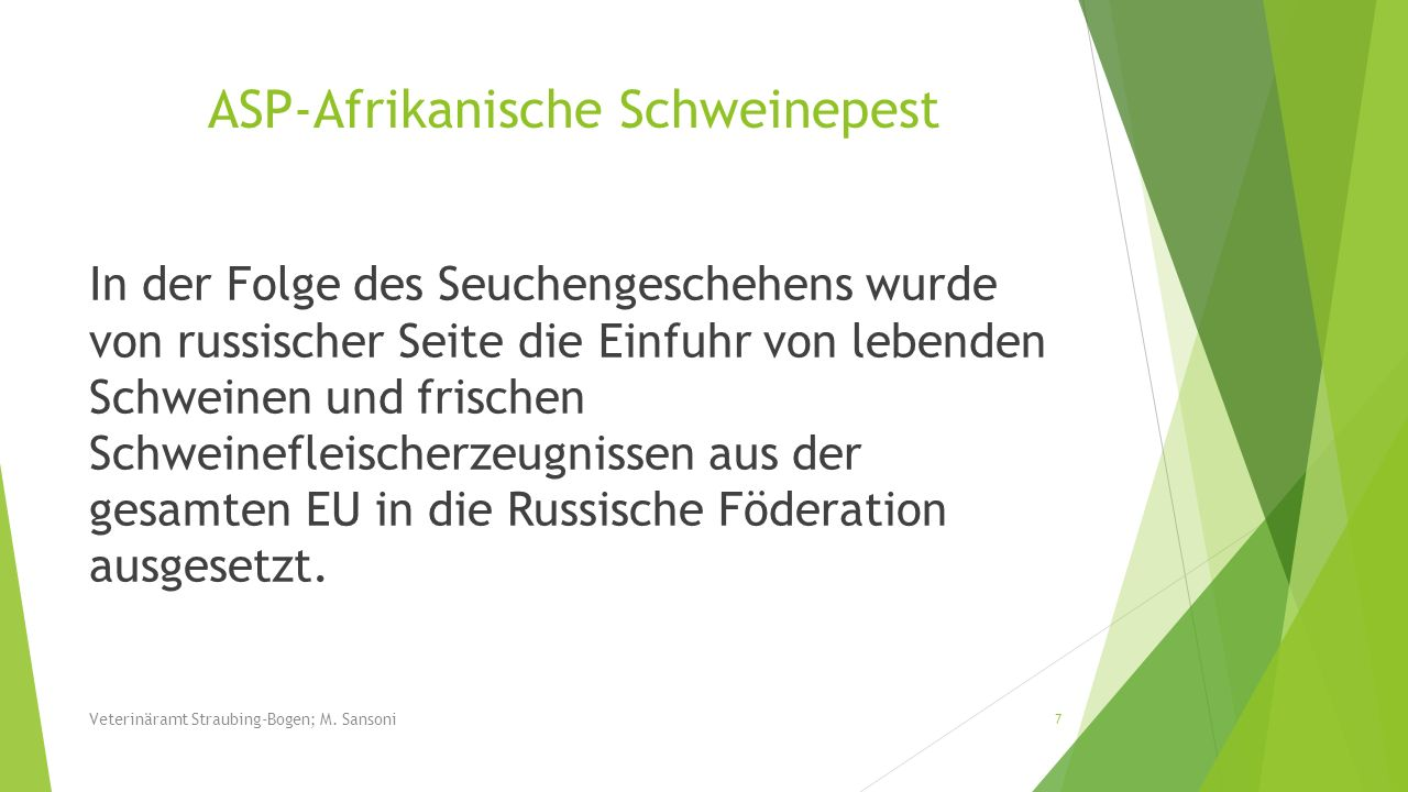 Radioaktivitätsuntersuchungen 2013/2014: 76 Untersuchungen in Ittling 17 Schweine über 500 Bq/kg höchste Messung über 3000 Bq/kg Gebiete: Münster, Wolferszell, Hunderdorf, Ascha, Saulburg, St.