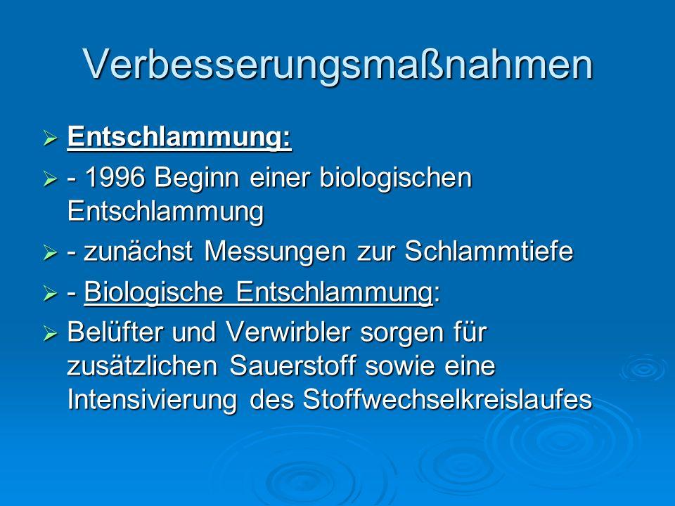 Verbesserungsmaßnahmen Entschlammung: Entschlammung: - 1996 Beginn einer biologischen Entschlammung - 1996 Beginn einer biologischen Entschlammung - zunächst Messungen zur Schlammtiefe - zunächst Messungen zur Schlammtiefe - Biologische Entschlammung: - Biologische Entschlammung: Belüfter und Verwirbler sorgen für zusätzlichen Sauerstoff sowie eine Intensivierung des Stoffwechselkreislaufes Belüfter und Verwirbler sorgen für zusätzlichen Sauerstoff sowie eine Intensivierung des Stoffwechselkreislaufes