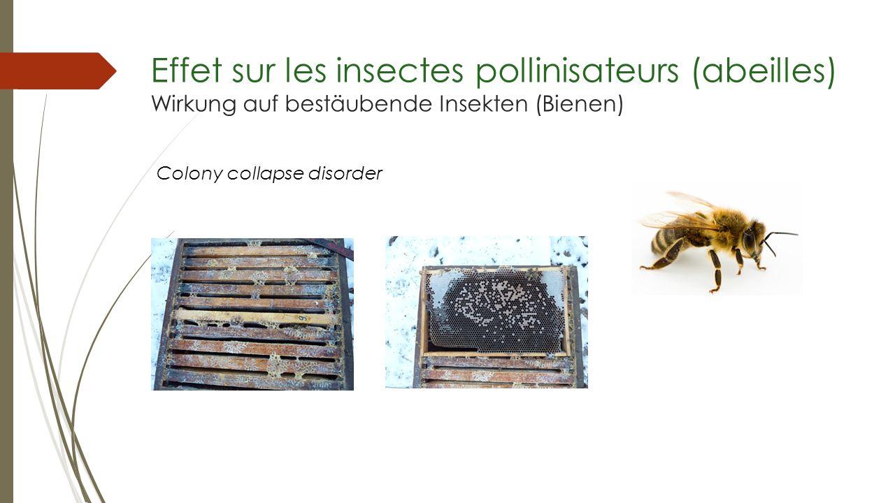 Colony collapse disorder Effet sur les insectes pollinisateurs (abeilles) Wirkung auf bestäubende Insekten (Bienen)