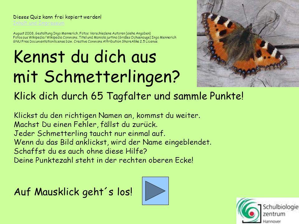 0 Kennst du dich aus mit Schmetterlingen.Klick dich durch 65 Tagfalter und sammle Punkte.
