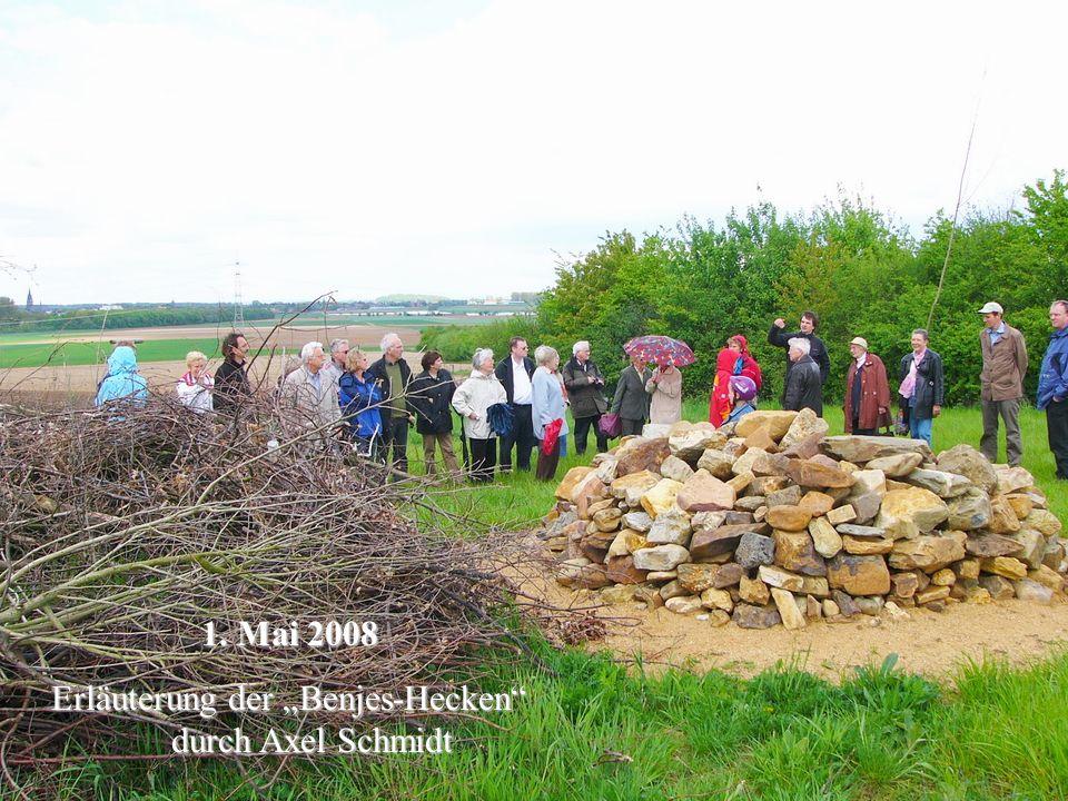1. Mai 2008 Erläuterung der Benjes-Hecken durch Axel Schmidt Erläuterung der Benjes-Hecken durch Axel Schmidt