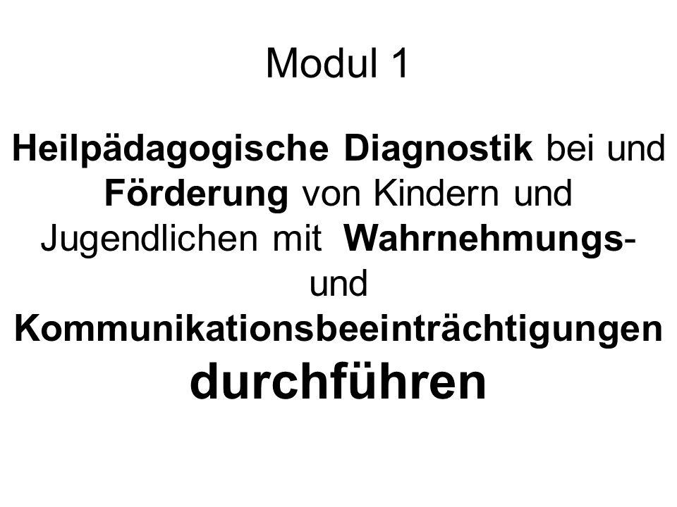 Modul 1 Heilpädagogische Diagnostik bei und Förderung von Kindern und Jugendlichen mit Wahrnehmungs- und Kommunikationsbeeinträchtigungen durchführen