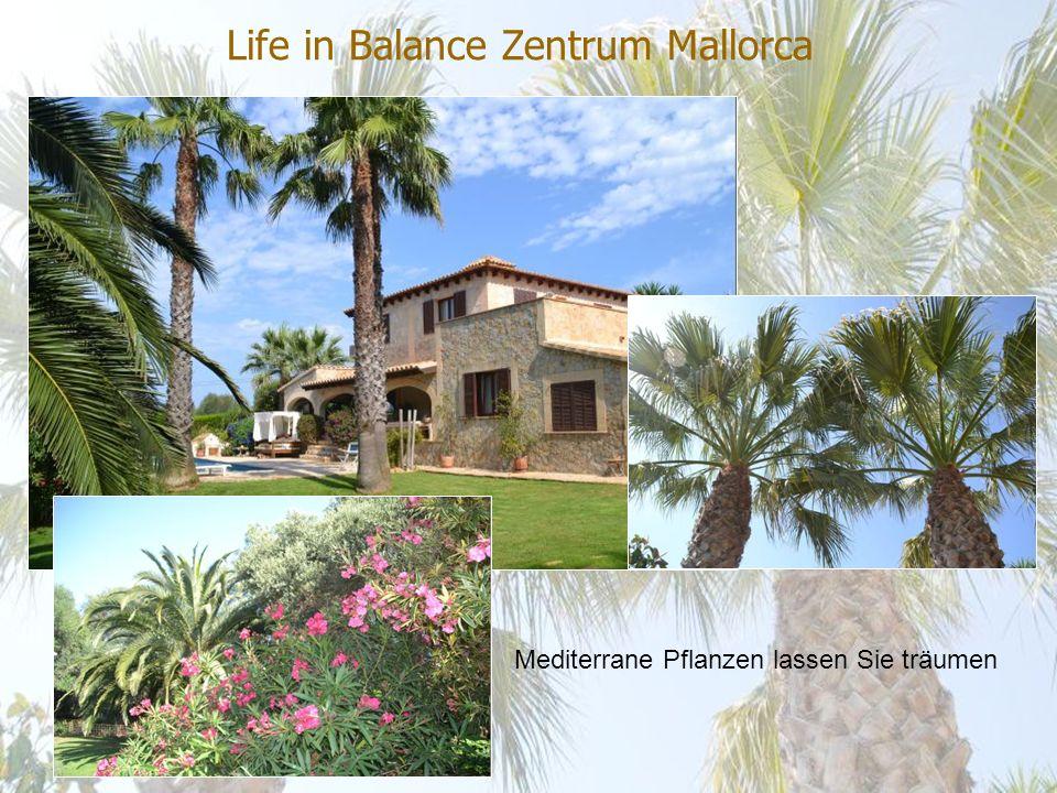 Life in Balance Zentrum Mallorca Im Life in Balance Zentrum Mallorca erwarten Sie interessante, spannende, erholsame, bildende und erleichternde Tage.