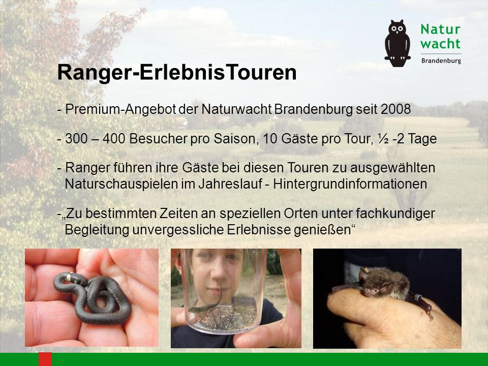 Ranger-ErlebnisTouren - Premium-Angebot der Naturwacht Brandenburg seit 2008 - 300 – 400 Besucher pro Saison, 10 Gäste pro Tour, ½ -2 Tage - Ranger fü