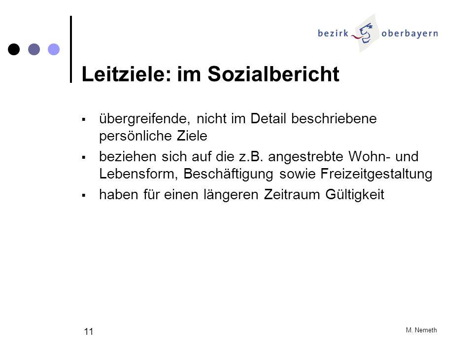 M. Nemeth 11 Leitziele: im Sozialbericht übergreifende, nicht im Detail beschriebene persönliche Ziele beziehen sich auf die z.B. angestrebte Wohn- un