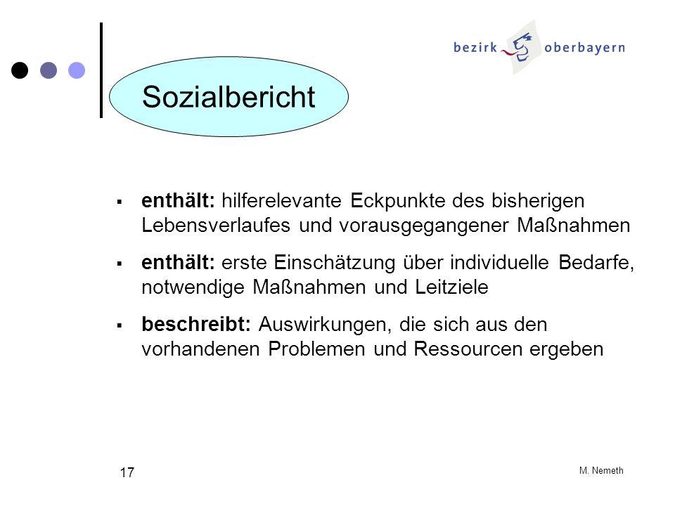 M. Nemeth 17 enthält: hilferelevante Eckpunkte des bisherigen Lebensverlaufes und vorausgegangener Maßnahmen enthält: erste Einschätzung über individu