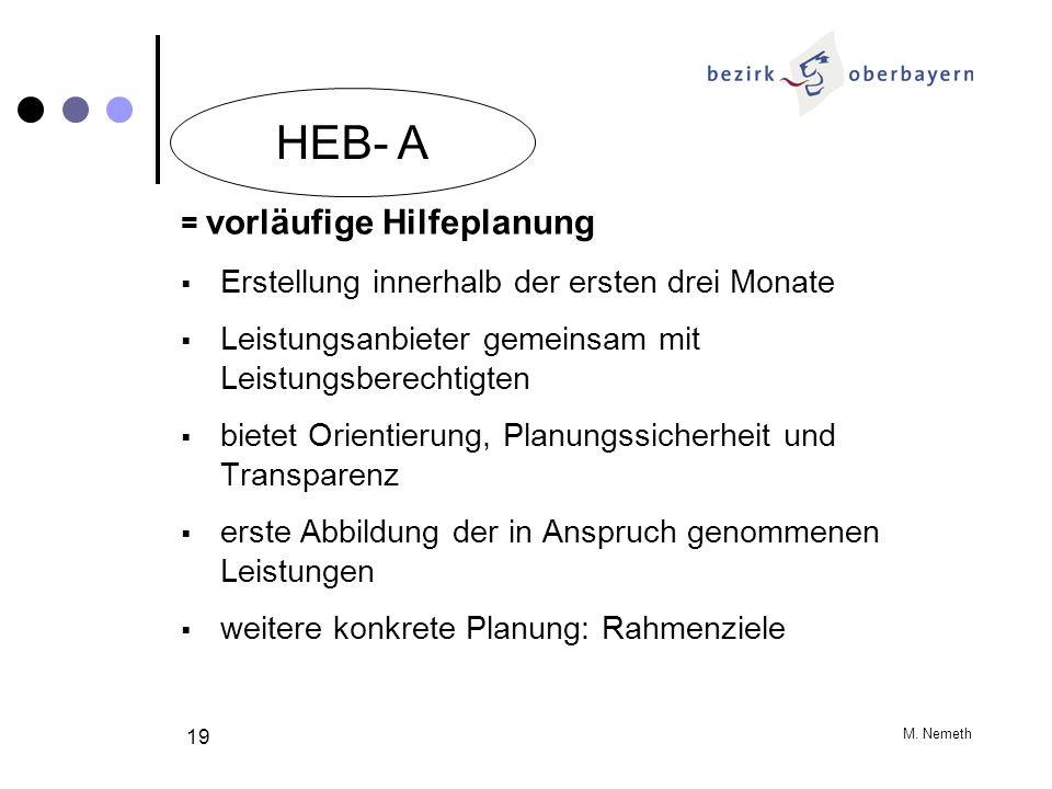 M. Nemeth 19 = vorläufige Hilfeplanung Erstellung innerhalb der ersten drei Monate Leistungsanbieter gemeinsam mit Leistungsberechtigten bietet Orient
