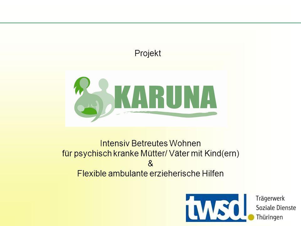 Projekt Intensiv Betreutes Wohnen für psychisch kranke Mütter/ Väter mit Kind(ern) & Flexible ambulante erzieherische Hilfen