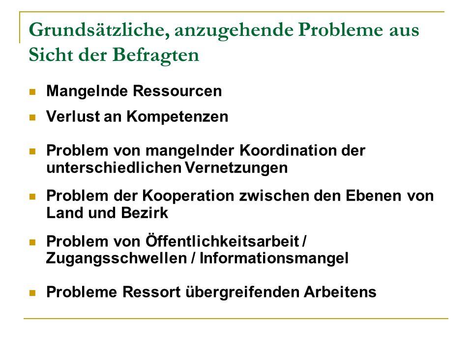 Grundsätzliche, anzugehende Probleme aus Sicht der Befragten Mangelnde Ressourcen Verlust an Kompetenzen Problem von mangelnder Koordination der unter