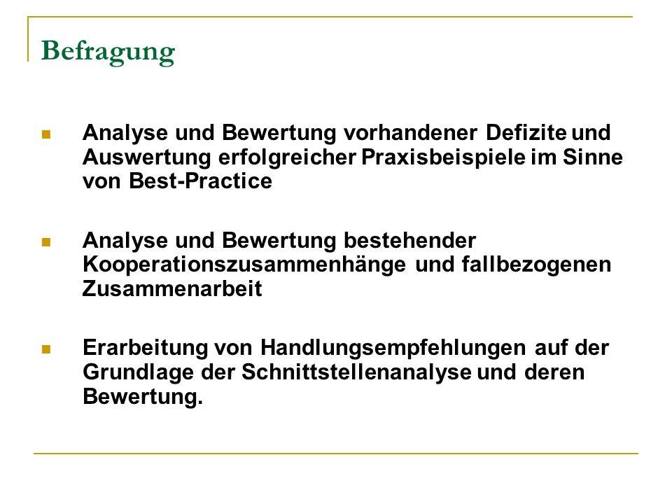 Befragung Analyse und Bewertung vorhandener Defizite und Auswertung erfolgreicher Praxisbeispiele im Sinne von Best-Practice Analyse und Bewertung bes