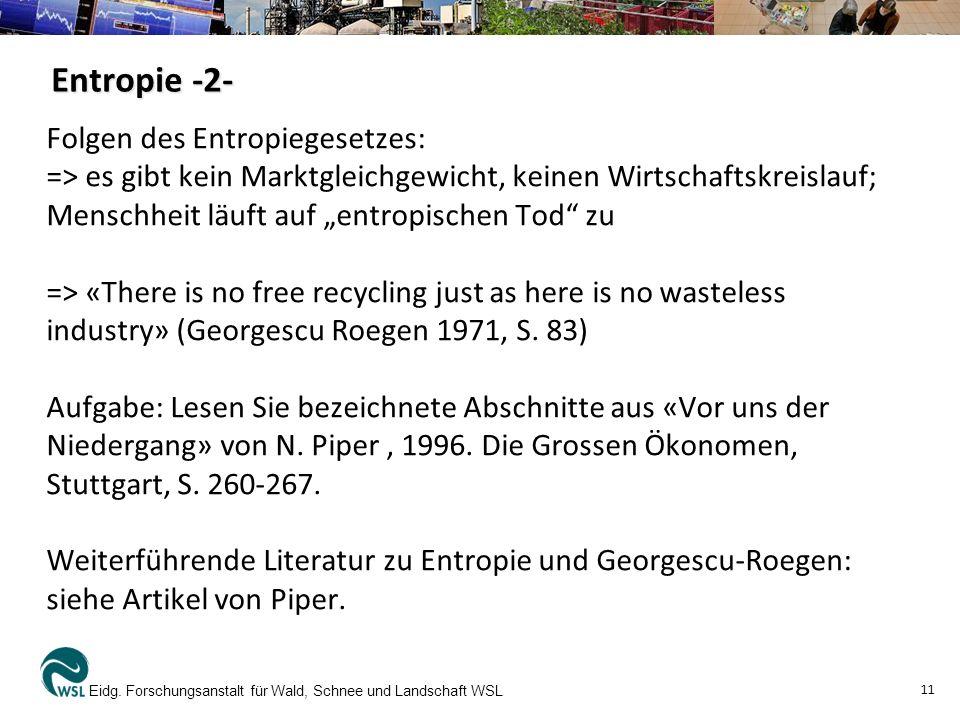 Entropie -2- Folgen des Entropiegesetzes: => es gibt kein Marktgleichgewicht, keinen Wirtschaftskreislauf; Menschheit läuft auf entropischen Tod zu =>