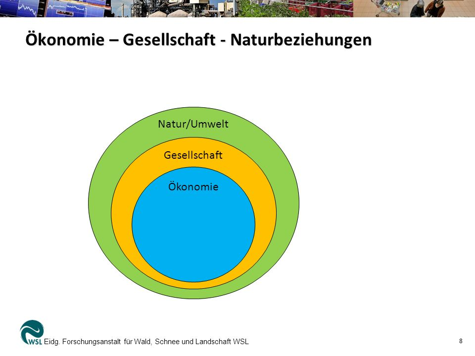 Ökonomie – Gesellschaft - Naturbeziehungen Eidg. Forschungsanstalt für Wald, Schnee und Landschaft WSL 8 Natur/Umwelt Gesellschaft Ökonomie