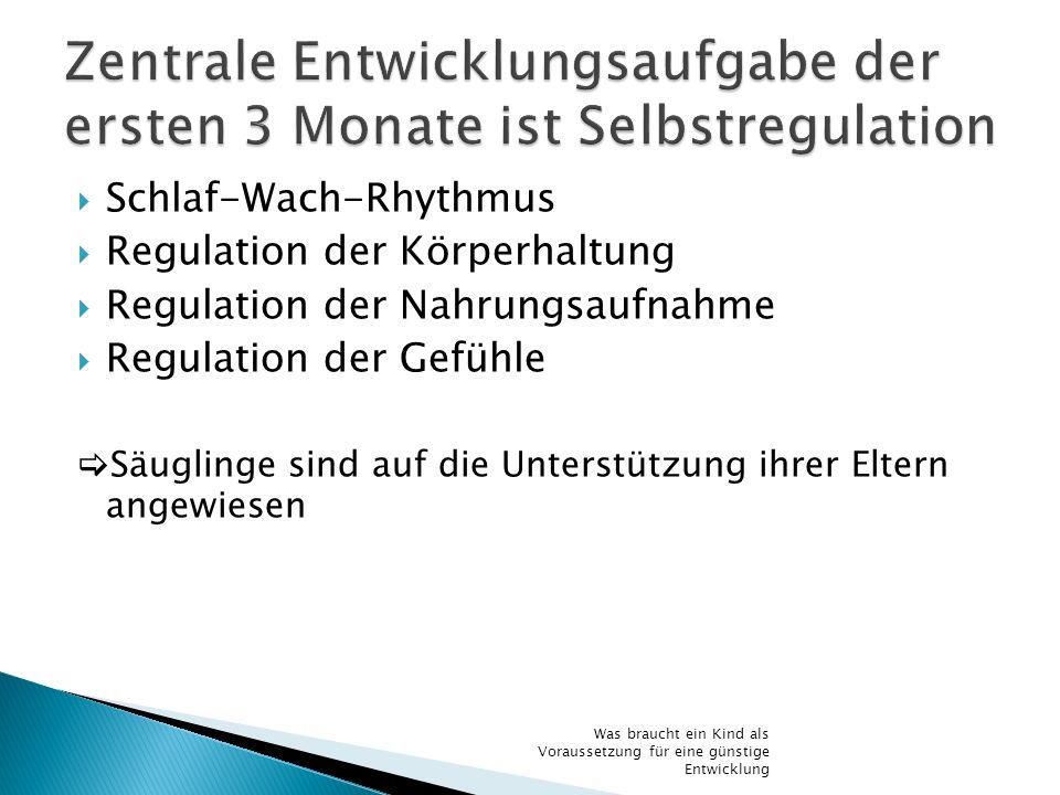 Schlaf-Wach-Rhythmus Regulation der Körperhaltung Regulation der Nahrungsaufnahme Regulation der Gefühle Säuglinge sind auf die Unterstützung ihrer El