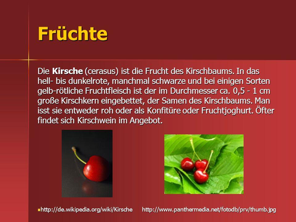 Früchte Die Kirsche (cerasus) ist die Frucht des Kirschbaums. In das hell- bis dunkelrote, manchmal schwarze und bei einigen Sorten gelb-rötliche Fruc