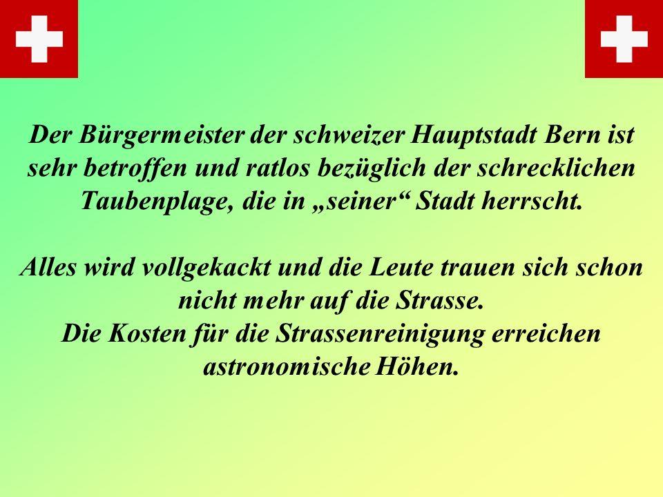 Der Bürgermeister der schweizer Hauptstadt Bern ist sehr betroffen und ratlos bezüglich der schrecklichen Taubenplage, die in seiner Stadt herrscht.