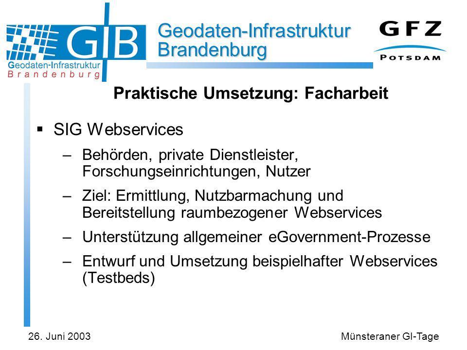 Geodaten-Infrastruktur Brandenburg 26. Juni 2003Münsteraner GI-Tage Praktische Umsetzung: Facharbeit SIG Webservices –Behörden, private Dienstleister,