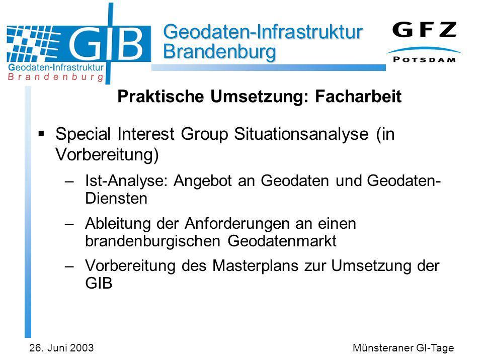Geodaten-Infrastruktur Brandenburg 26. Juni 2003Münsteraner GI-Tage Praktische Umsetzung: Facharbeit Special Interest Group Situationsanalyse (in Vorb