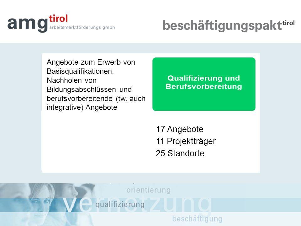 Angebote zum Erwerb von Basisqualifikationen, Nachholen von Bildungsabschlüssen und berufsvorbereitende (tw. auch integrative) Angebote 17 Angebote 11