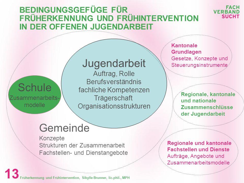 Früherkennung und Frühintervention, Sibylle Brunner, lic.phil., MPH 12 ERGEBNISSE Angebote der offenen Jugendarbeit Entwicklung von Arbeitsinstrumente