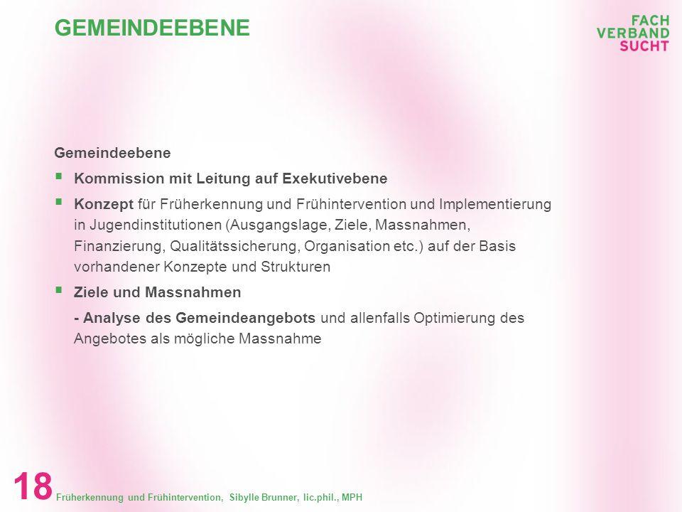 Früherkennung und Frühintervention, Sibylle Brunner, lic.phil., MPH 17 LOKALE, REGIONALE EBENE Lokale oder regionale Ebene (Zusammenschlüsse im Berufs