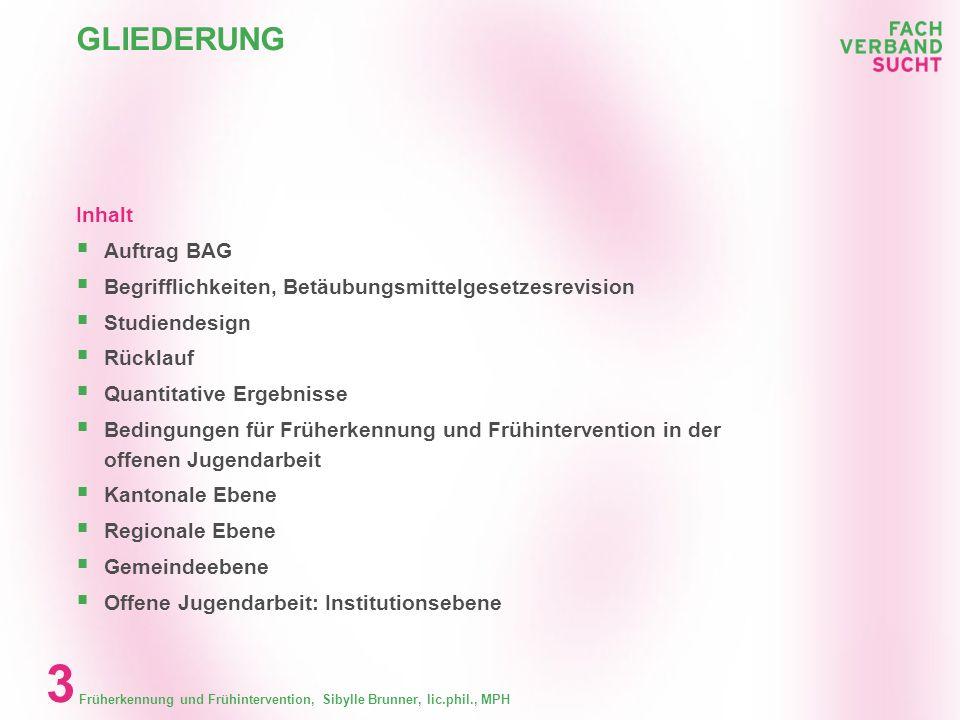 Früherkennung und Frühintervention, Sibylle Brunner, lic.phil., MPH 33 EMPFEHLUNGEN FÜR ANGEBOTE IM SCHULBEREICH Welche Empfehlungen können für den Schulbereich gemacht werden.