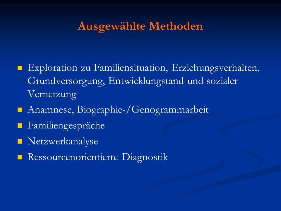 Ausgewählte Methoden Exploration zu Familiensituation, Erziehungsverhalten, Grundversorgung, Entwicklungstand und sozialer Vernetzung Anamnese, Biogra