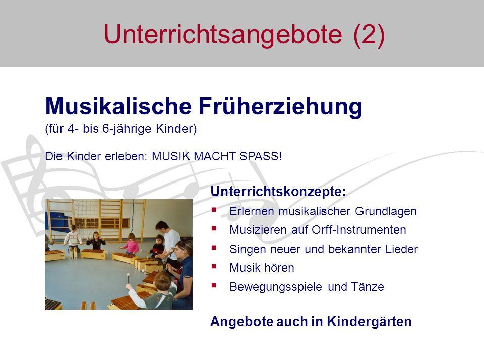 Unterrichtsangebote (3) Schnupperkurs: Wege zum Instrument (ab 6 Jahre) Die Kinder erleben das INSTRUMENTENKARUSELL.