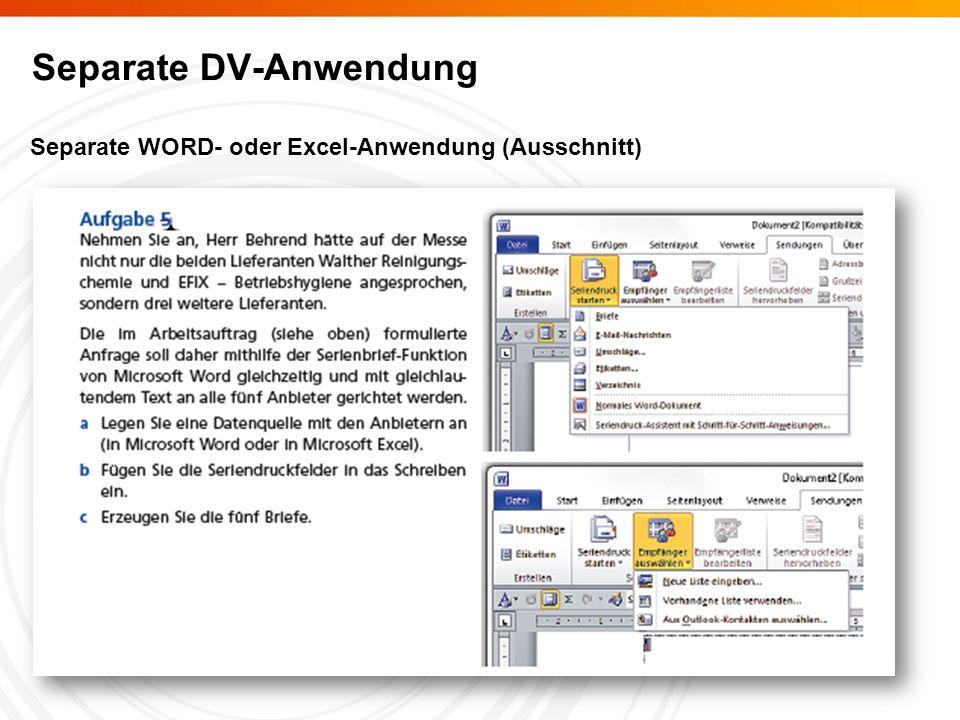 Separate DV-Anwendung Separate WORD- oder Excel-Anwendung (Ausschnitt)