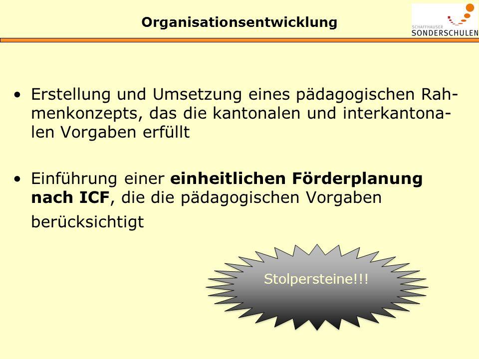 Organisationsentwicklung Erstellung und Umsetzung eines pädagogischen Rah- menkonzepts, das die kantonalen und interkantona- len Vorgaben erfüllt Einf