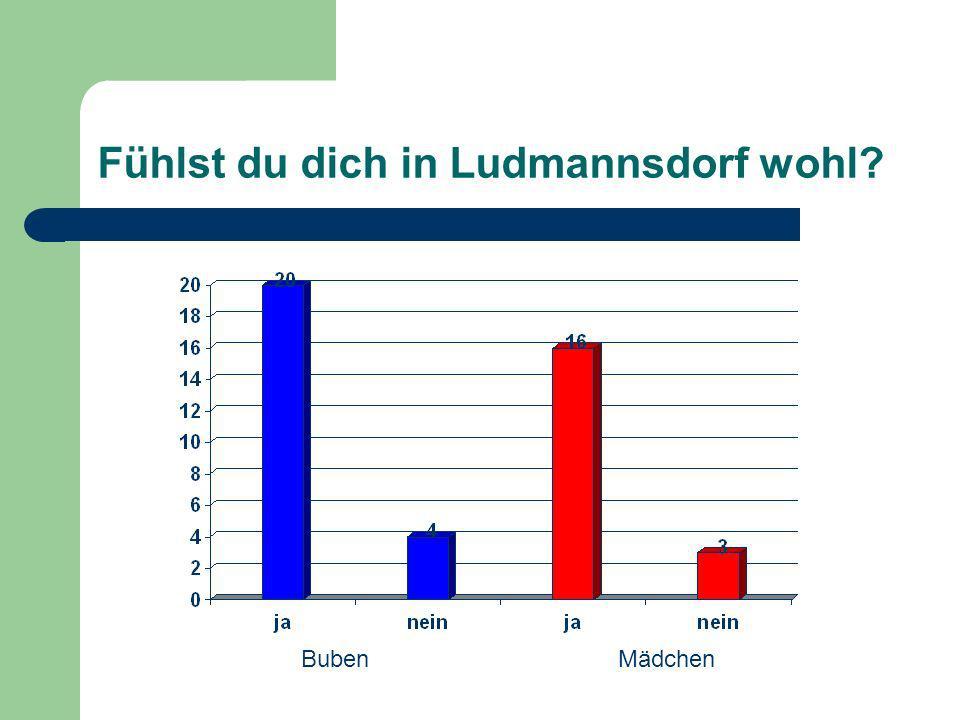 Fühlst du dich in Ludmannsdorf wohl BubenMädchen