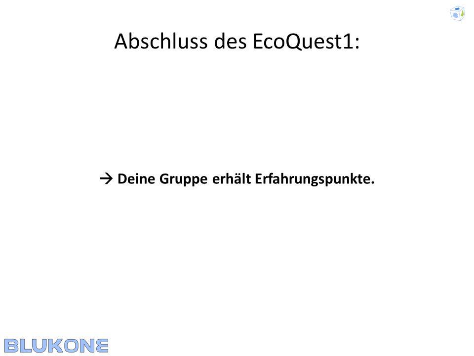 Abschluss des EcoQuest1: Deine Gruppe erhält Erfahrungspunkte.