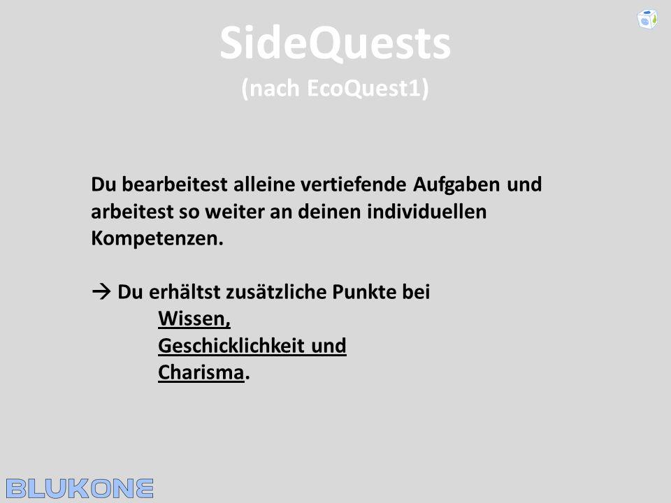 SideQuests (nach EcoQuest1) Du bearbeitest alleine vertiefende Aufgaben und arbeitest so weiter an deinen individuellen Kompetenzen. Du erhältst zusät