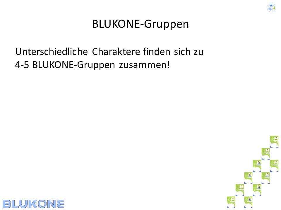 Unterschiedliche Charaktere finden sich zu 4-5 BLUKONE-Gruppen zusammen! BLUKONE-Gruppen