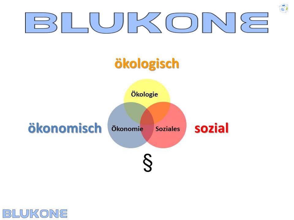 Allgemeiner Ablauf des BLUKONE-Lehrgangs