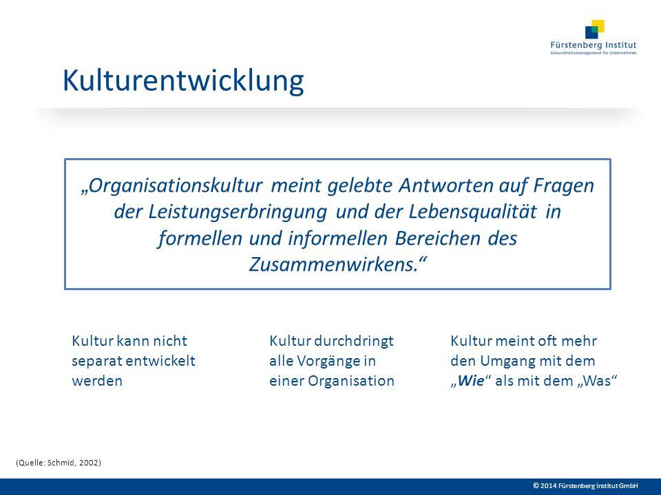 © 2014 Fürstenberg Institut GmbH Kulturentwicklung Organisationskultur meint gelebte Antworten auf Fragen der Leistungserbringung und der Lebensqualit