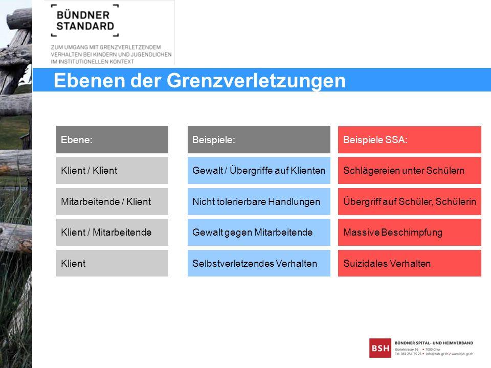 Ebenen der Grenzverletzungen Ebene: Mitarbeitende / Klient Klient / Mitarbeitende Klient / Klient Klient Beispiele: Gewalt / Übergriffe auf Klienten N